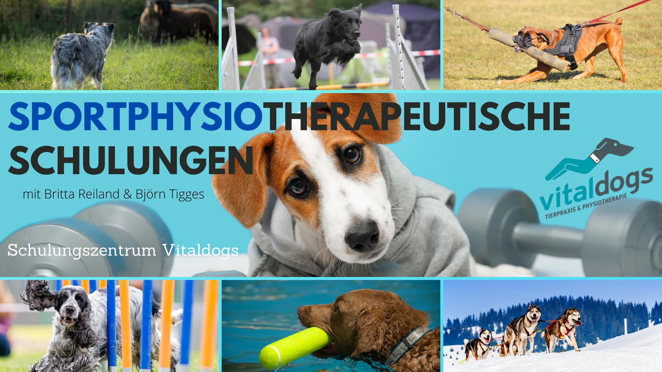 Sportphysiotherapeutische-Schulung-3-neu